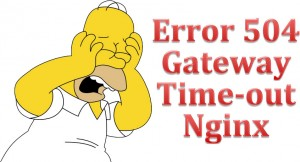 Error 504 Gateway Time-out Nginx en Plesk